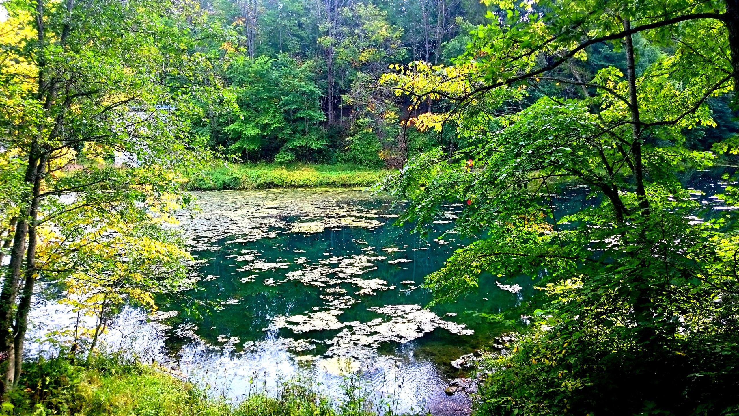 Лопухинка радоновое озеро фото